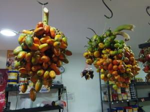 Alicita Chontaduro (Peach Palm)