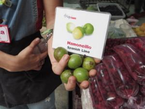 Manocollio (Spanish Lime)