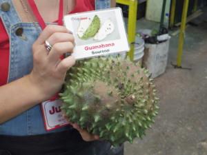 Guanabana (Soursop)